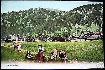 Switzerland~ADELBODEN~ Peasant Farmers ~ Cows