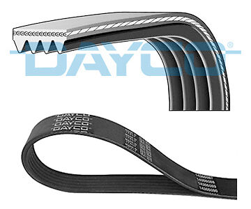 Multi V Drive Belt fits MAZDA 323 Mk6 1.6 01 to 04 327982RMP ZM-3 Auxiliary New