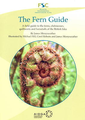 The Fern Guide: A Field Guide to the Ferns, Clubmosses, Quillworts & Horsetails