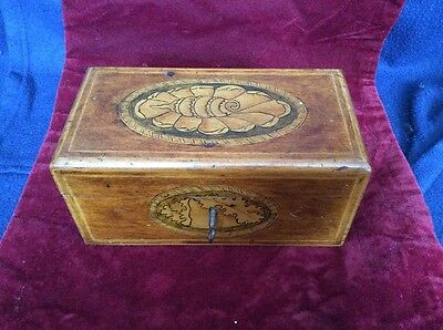 Antique Wooden Tea Caddy with Key - Shell Design