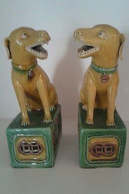 A Stunning  Pair Of Xix Century  Chinese Porcelain Dogs
