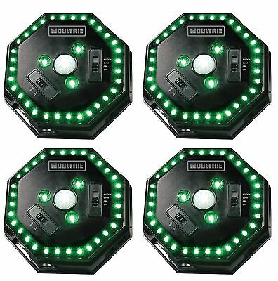 (4) MOULTRIE Motion-Activated LED Feeder Hog Lights w/ 30FT Radius   MFA-12651