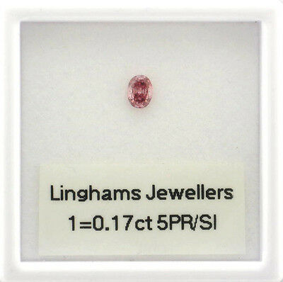 Natural Argyle Pink Diamond 1x0.17.5ct 5PR/Si Oval