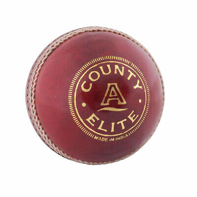 NEW Readers Leather County Supreme A Quality Match Cricket Ball School Balls