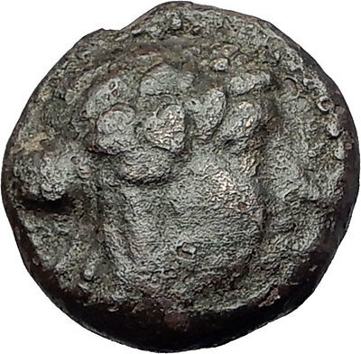 SARDES in LYDIA 200BC Authentic Ancient Greek Coin DIONYSUS Wine God LION i61773