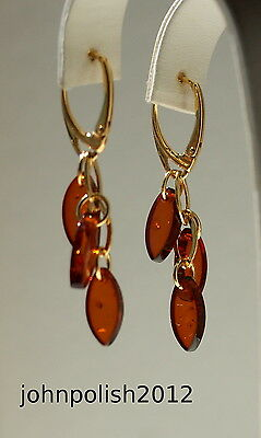 Cute Baltic Amber Earrings with Gold Plated Silver 925