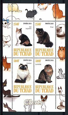 Chad 2010 Cats  MS MNH