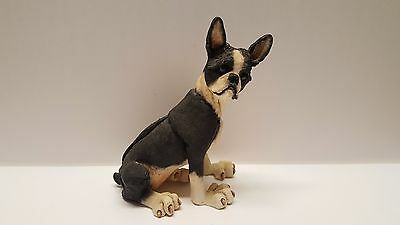 A Breed Apart  Boston Terrier dog figure statue #70022 7 1/2""