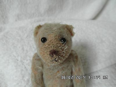 "EXTREMELY  RARE 6"" 1914 Steevans Farnell WW1 Soldier Mascot Good Luck Bear"