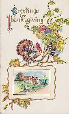 Thanksgiving Greetings, Embossed, Turkey, 1910 ? Cancel Postcard