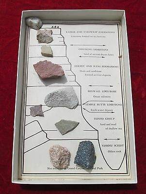 Vintage Grand Canyon Rocks Lots Of 8 In Box Display Stones Earth Geology