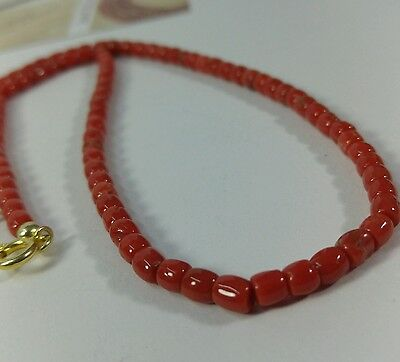 Natural dark red coral drum  beads  Necklace gold plated silver