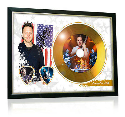 Mark Hoppus Blink 182 Flag Style Signed Gold Disc Display