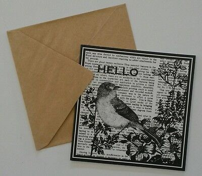 Set of 6 Blank Square Thank You Greeting Note Cards & Envelopes ~ Hello Bird
