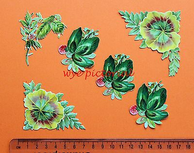 Collection 6 X Victorian Embossed Scraps  Clover Leaves Flowers Ferns Corners