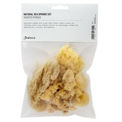 Sponges Bag : NEW Larger Assorted Sponge Bag
