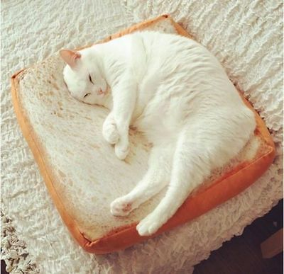 Pet Fashion Cartoon Bread Toast Cushion Mat Soft Plush Cat Dog Bed lit chat