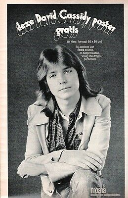 DAVID CASSIDY 'beads'  magazine PHOTO/Poster/clipping 12x7 inches
