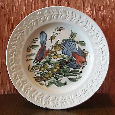 """Adams Birds of America 10"""" Plate featuring the Florida Jay."""