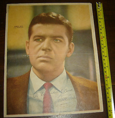 the defenders ROBERT REED rare  ARGENTINA Canal TV insert Poster vintage 1960