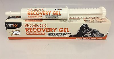 Probiotic Recovery Gel Digestive Support help Diarrhea treatment Puppies & Dogs
