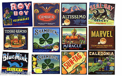 12 Citrus Crate Labels Vintage Lot Orange County California Original Collection