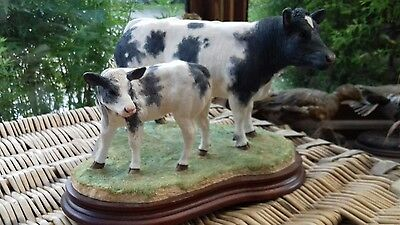 Border fine arts Belgian Blue Cow and Calf limited edition