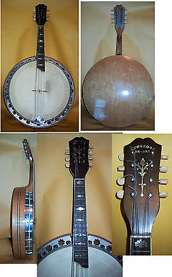 Prohibition Era Banjo Mandolin