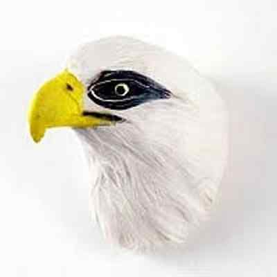 Realistic  Bald Eagle Feather Magnet! Support Your Sport Team! Nice Gift!