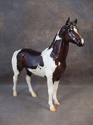 **SCOTTY** Bay Tobiano Classic Swaps Collector's Club SR! #712231 SOLD OUT!
