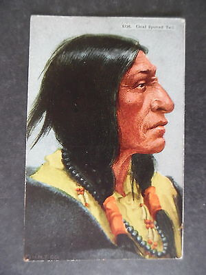 ca1910 Indian Chief Spotted Tail Postcard