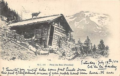 POSTCARD   SWITZERLAND   PROZ  du  SEX  (  Forclaz )