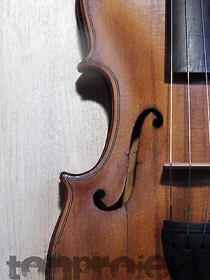 interesting old 4/4 VIOLIN old quality fiddle バイオリン Geige 小提琴 violon