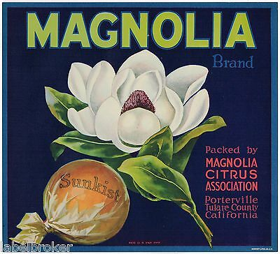 Orange Crate Label Magnolia Porterville Tulare Floral Original Vintage 1930S