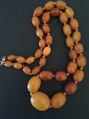 Vintage butterscotch ,egg yolk ,honey ,amber graduated beaded necklace