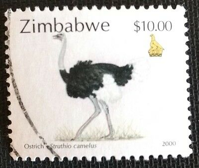 118.zimbabwe 2000 ($10.00$) Used Stamp Birds,ostrich