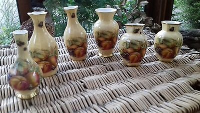 Collection of 6 Aynsley Orchard Gold Vases
