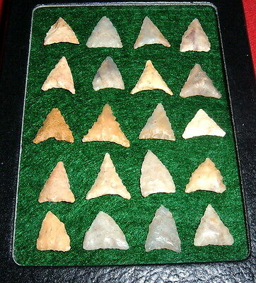 (20) Select Mini Sahara Neolithic Points W/CASE, Prehistoric African Arrowheads