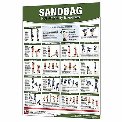 Productive Fitness Sandbag Poster Laminated Home Gym Workout Area Equipment