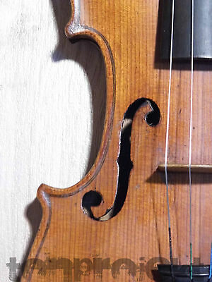 fine antique  4/4 quality STAINER brandmarked VIOLIN Geige 小提琴 Germany 19cty