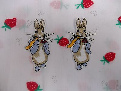 peter rabbit  in his sunday best pk 2 motif, patch, transfer.