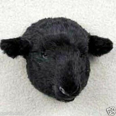 BLACK SHEEP! Collect Fur Magnets. ANY PROFIT GOES TO OUR UNWANTED PETS PROGRAM.