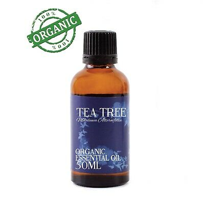 Mystic Moments | Tea Tree Organic Essential Oil - 100% Pure - 50ml (CO50TEATREE)