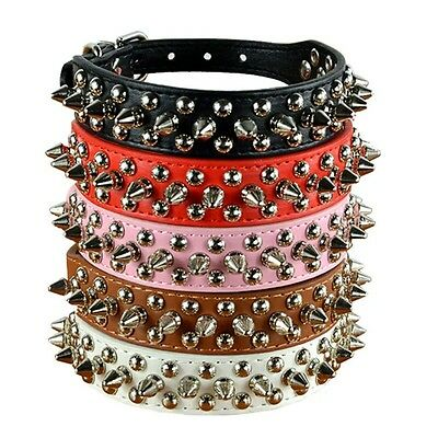 Dog Collar Spike Studded Gem Teacup Xs X Small Adjustable Chihuahua Jack Pug