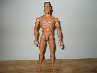 Nude 12'' Ethnic Male Fashion Doll/Figure Ken/Integrity/GI Joe