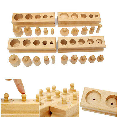 New Wooden Montessori Educational Material Knobbed Cylinder Blocks Family Set