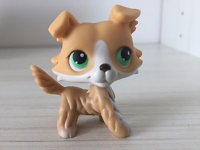 littlest pet shop Dog collie colley #272 yellow tan white RARE 👌