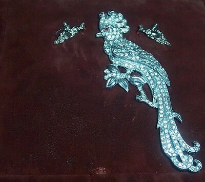 Neat Vintage Large Pot? Metal Cockatoo Brooch Pave Rhinestones Demi Parure Set