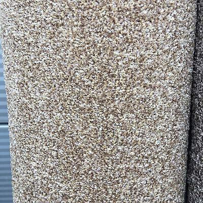 Cheap Carpet Remnant / Roll End Stainfree Spicy Honeycomb 4x1.07m Cheap