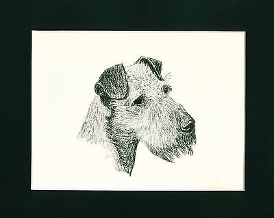 Dog Print 1935 Irish Terrier by Francis Wardle VINTAGE